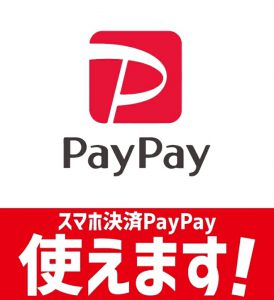 "<span class=""title"">Paypay始めました。</span>"